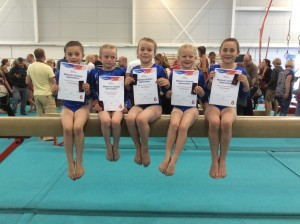 WWG Squad Gymnasts Have a Great Day at South West Grades